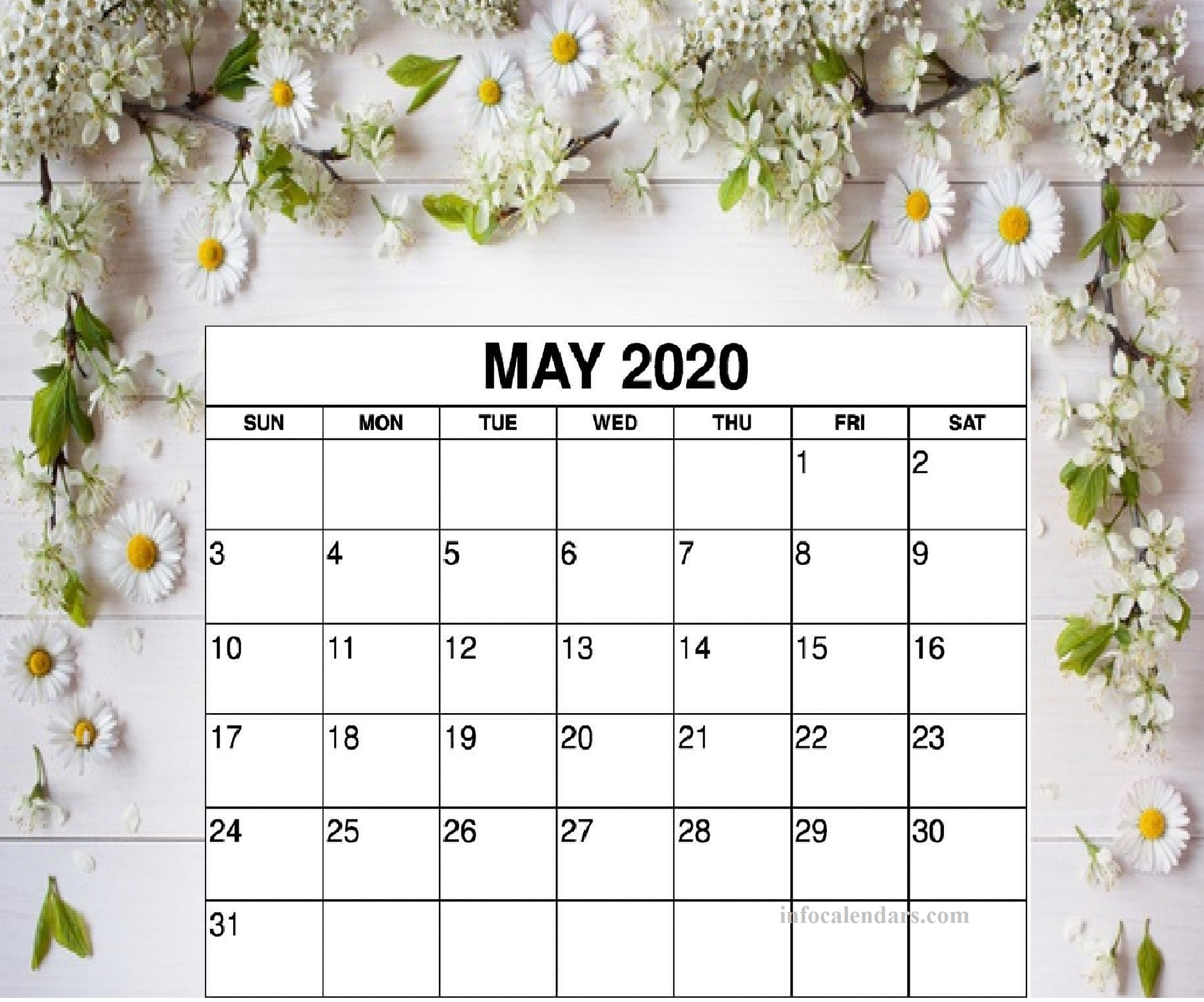 Cute May 2020 Calendar Lunar