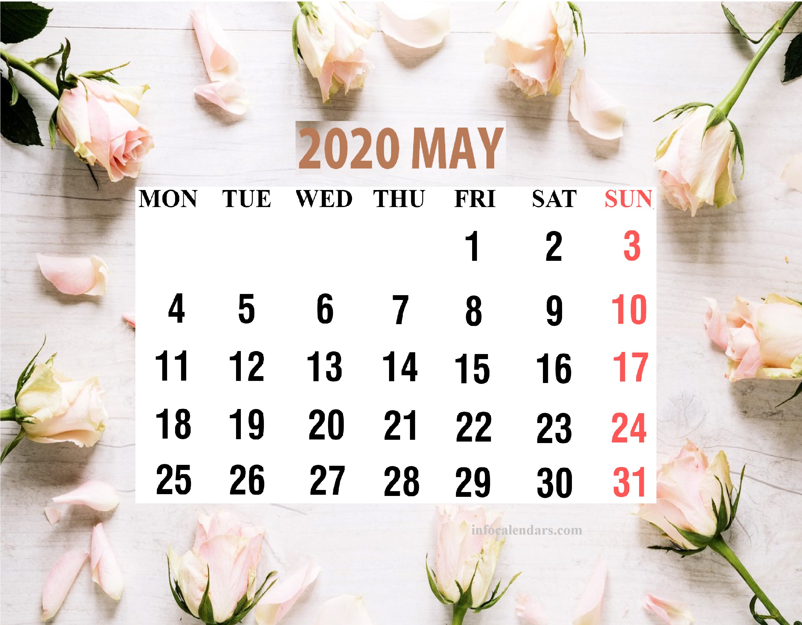 Cute May 2020 Calendar Portrait